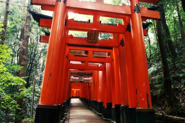 Sentiero di torii al Fushimi Inari
