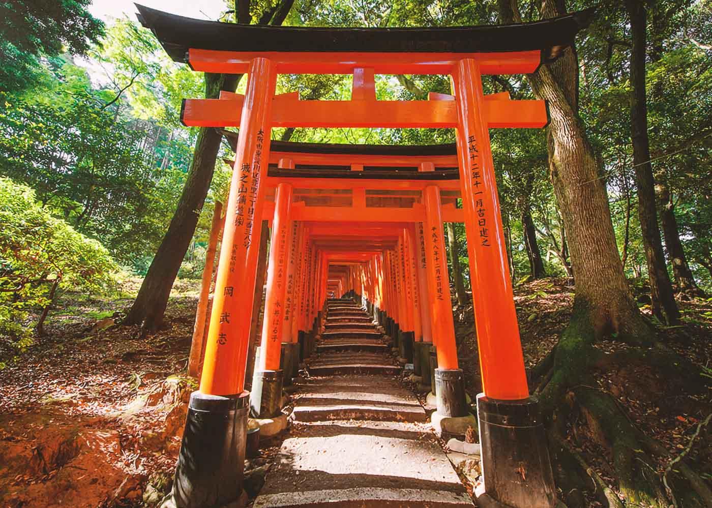 Torii del Fushimi Inari