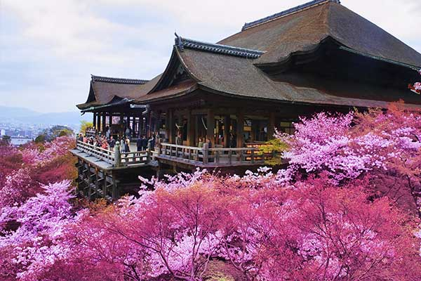 Kyomizu-dera in Primavera