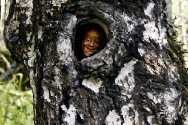 Aokigahara (Jurai) Foresta dei Suicidi - Faccia di un manichino dentro un albero