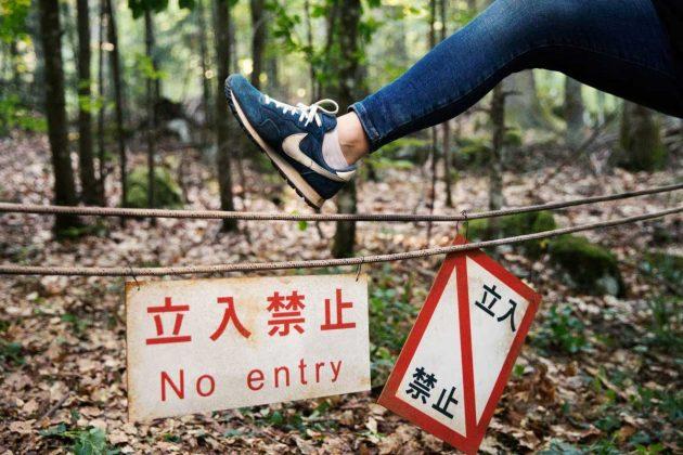 Aokigahara (Jurai) Foresta dei Suicidi - Volontari nella foresta di Aokigahara