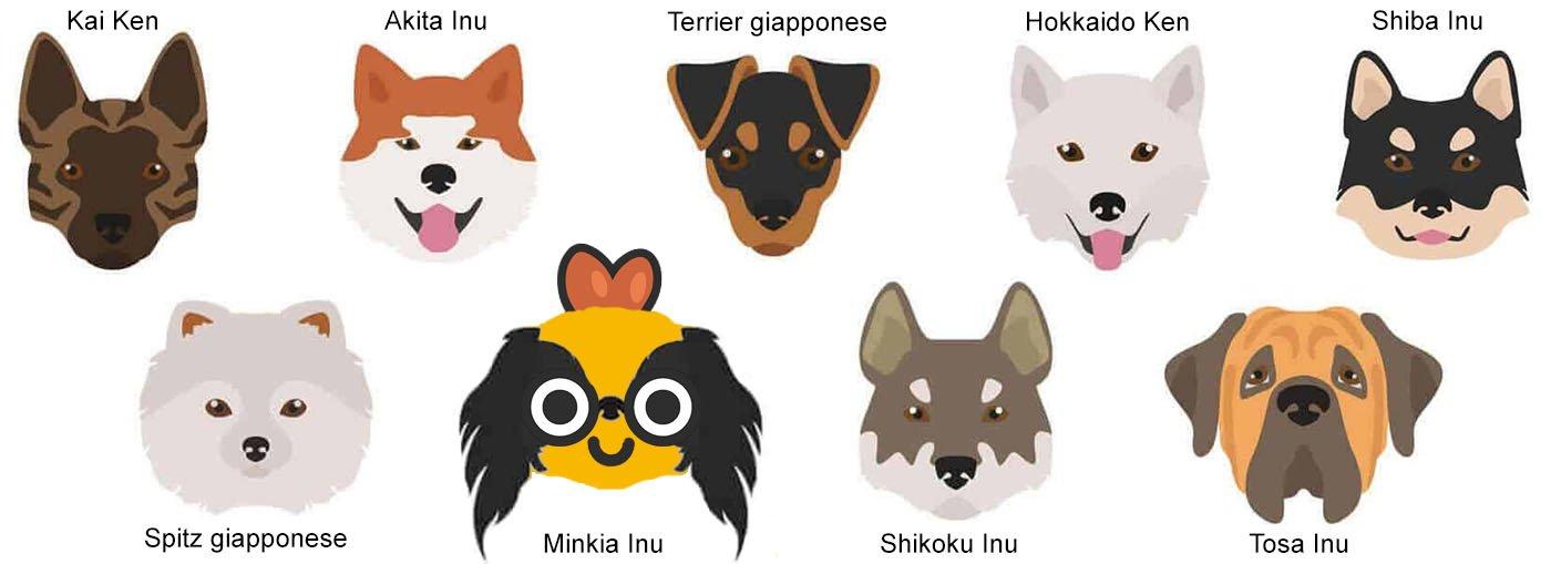 Razze di cani giapponesi