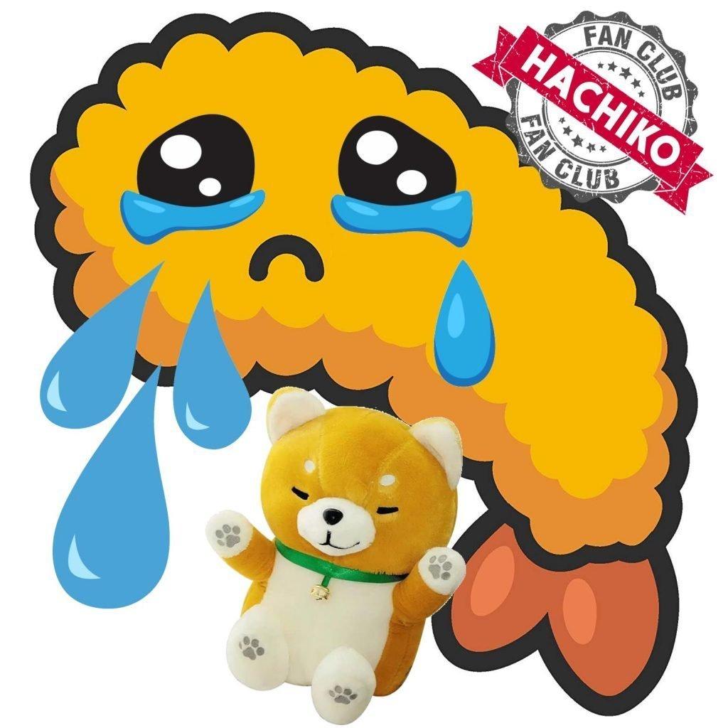 Minkia fans di Hachiko