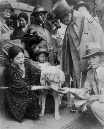 Hachiko alla stazione con i suoi fans