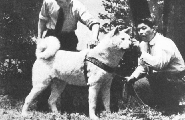 Hachiko con i suoi fans